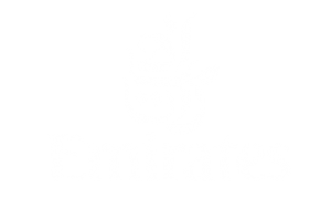 logo-emirates